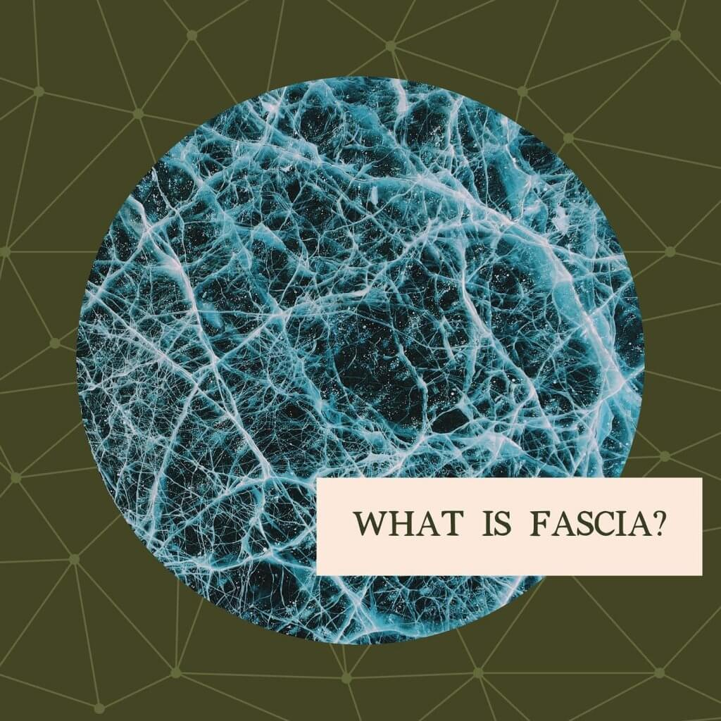 What is fascia - Gillespie Approach–Craniosacral Fascial Therapy